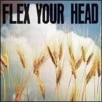 V/A: Flex your head