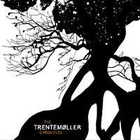 Trentemoller: The Trentemoller chronicles