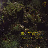 Tyndall, Nik: Sounds Of Silence