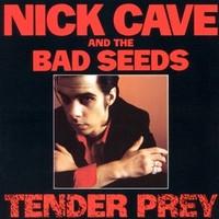 Cave, Nick: Tender prey