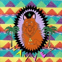Wavves : King of the Beach