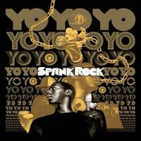 Spank Rock: YoyoyoYoyoyo -instrumentals-