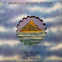 P.F.M.: The World Became The World