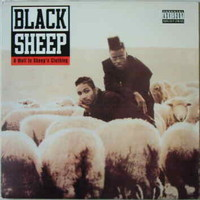 Black Sheep : A wolf in sheep's clothing