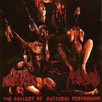 Human Mastication: Gallery of Guttural Perversion -split