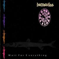 Barracudas: Wait For Everything