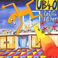 UB40: Rat in the kitchen