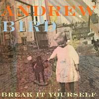 Bird, Andrew: Break It Yourself