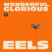 Eels : Wonderful, glorious -deluxe edition