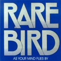 Rare Bird: As Your Mind Flies By