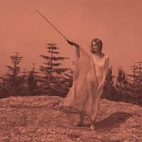 Unknown Mortal Orchestra: Unknown Mortal Orchestra II