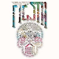 Don Johnson Big Band : Fiesta