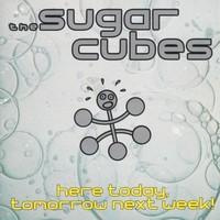 Sugarcubes : Here Today, Tomorrow Next Week!