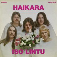 Haikara: Iso lintu