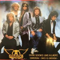 Aerosmith: Dude -Looks Like A Lady-