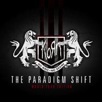 Korn : Paradigm shift