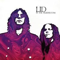 Lid: In The Mushroom