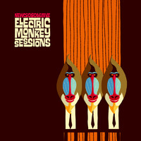 New Cool Collective: Electric monkey sessions