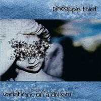 Pineapple Thief: Variations on a Dream
