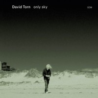 Torn, David: Only Sky