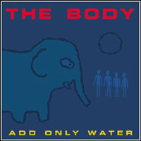 Body (Fin): Add only water