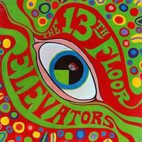 13th Floor Elevators: Psychedelic Sounds Of...