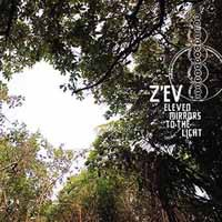 Z'ev: Eleven mirrors to the light