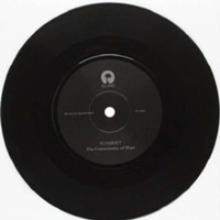 Harvey, PJ: The community of hope -etched vinyl