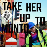 Murphy, Roisin: Take her up to monto