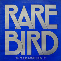 Rare Bird : As Your Mind Flies By