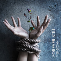 Forever Still: Tied down