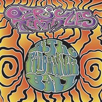 Ozric Tentacles: At the bongmasters ball