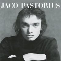 Pastorius, Jaco: Jaco Pastorius