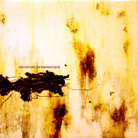 Nine Inch Nails : Downward Spiral
