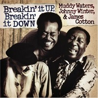 Cotton, James: Breakin' it up, breakin' it down