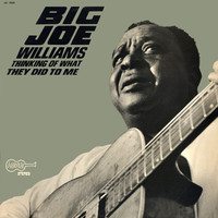 Williams, Big Joe: Thinking Of What They Did To Me