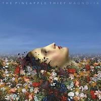 Pineapple Thief: Magnolia