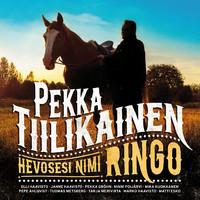Tiilikainen, Pekka: Hevosesi nimi Ringo