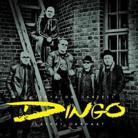Dingo: Autiotalon aarteet