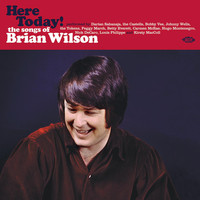 V/A: Here Today! The Songs of Brian Wilson