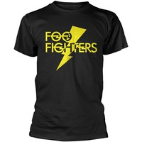 Foo Fighters: Lightning strike