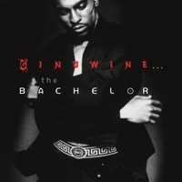 Ginuwine: Ginuwine:The Bachelor