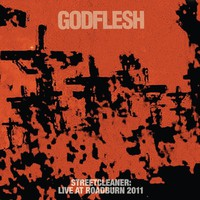 Godflesh: Streetcleaner: Live At Roadburn 2011