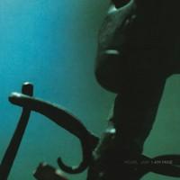 Pearl Jam: I Am Mine / Down