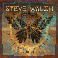 Walsh, Steve: Black Butterfly