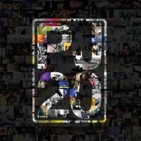 Pearl Jam : PJ 20