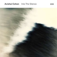 Cohen, Avishai: Into the silence