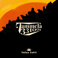 Tammela 33100: Valoa kohti