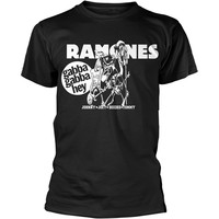Ramones: Gabba gabba hey cartoon