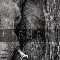 V/A: Harmony For Elephants - a Charity Album